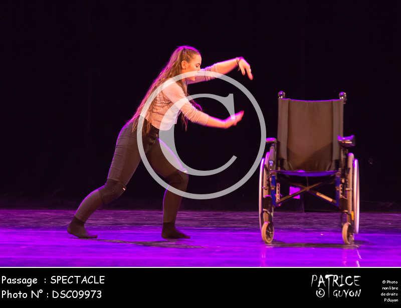 SPECTACLE-DSC09973
