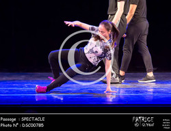 SPECTACLE-DSC00785