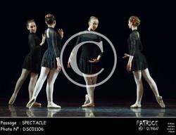 SPECTACLE-DSC01106