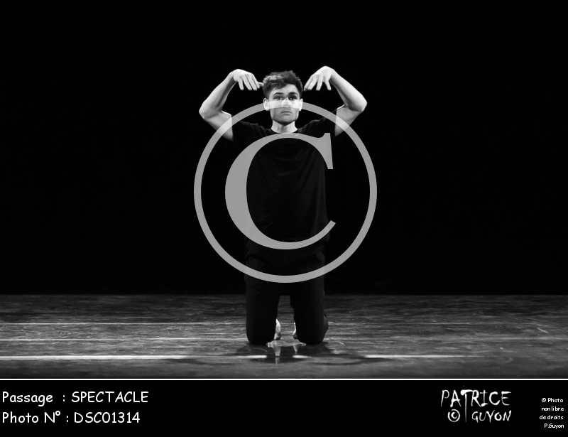 SPECTACLE-DSC01314