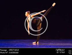 SPECTACLE-DSC00260