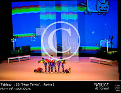 _Partie 1, 25--Nyan Tétris--DSC09926