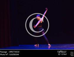SPECTACLE-DSC00244