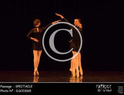 SPECTACLE-DSC01065