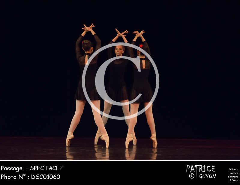 SPECTACLE-DSC01060