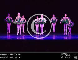 SPECTACLE-DSC00528