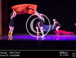 SPECTACLE-DSC00988