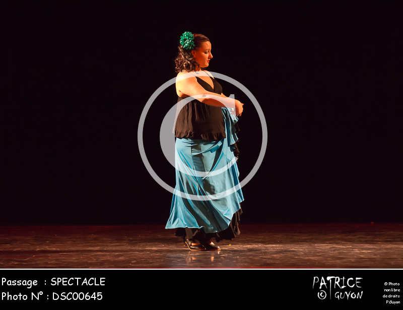 SPECTACLE-DSC00645