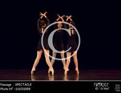SPECTACLE-DSC01059