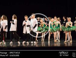 SPECTACLE-DSC01355