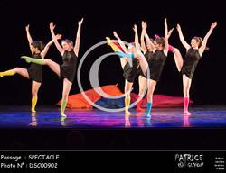 SPECTACLE-DSC00902