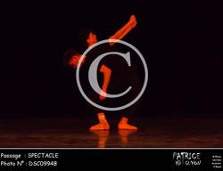 SPECTACLE-DSC09948