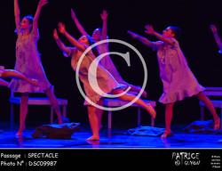 SPECTACLE-DSC09987
