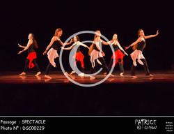 SPECTACLE-DSC00229
