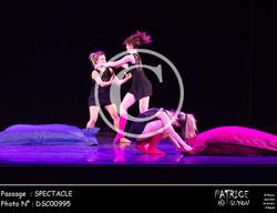 SPECTACLE-DSC00995
