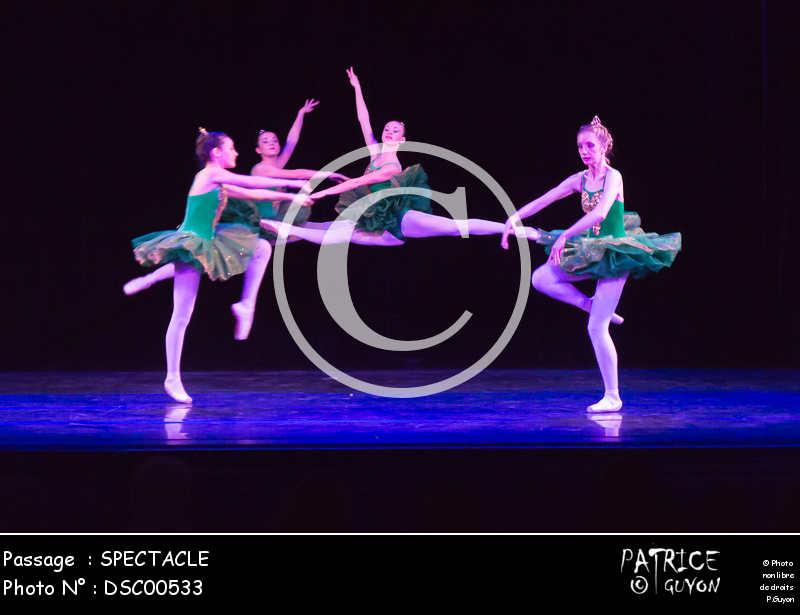 SPECTACLE-DSC00533