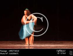 SPECTACLE-DSC00671