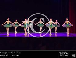 SPECTACLE-DSC00588