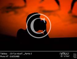 _Partie 2, 23--Le réveil--DSC01480