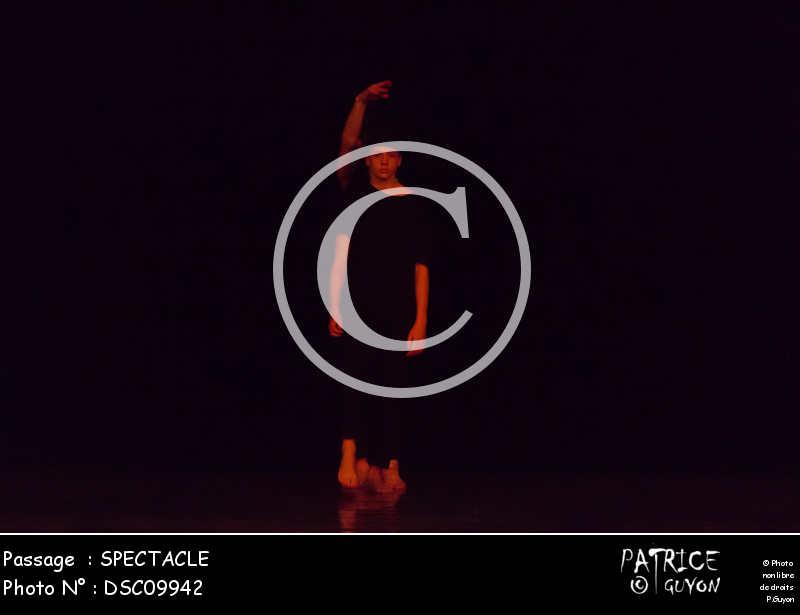 SPECTACLE-DSC09942