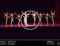SPECTACLE-DSC00514