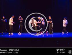 SPECTACLE-DSC00712