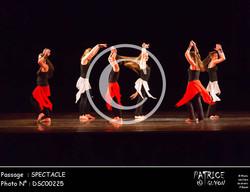 SPECTACLE-DSC00225