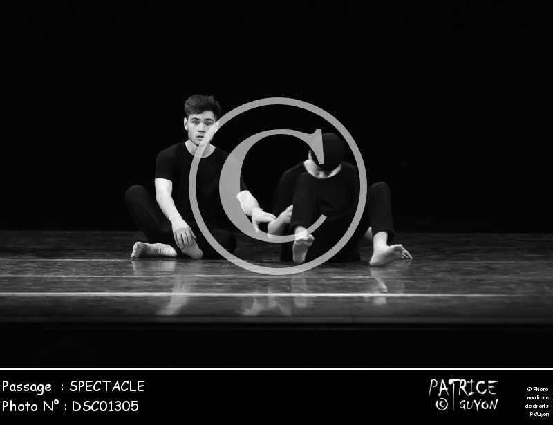 SPECTACLE-DSC01305