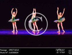 SPECTACLE-DSC00524