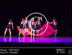 SPECTACLE-DSC01001