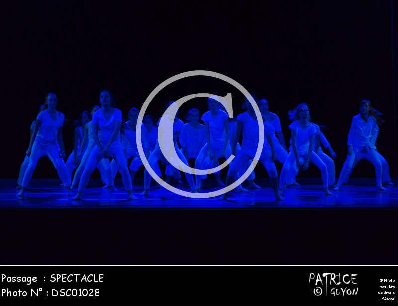 SPECTACLE-DSC01028