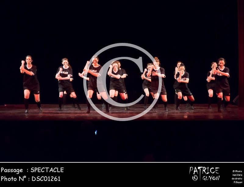 SPECTACLE-DSC01261