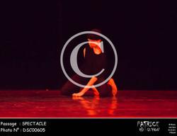 SPECTACLE-DSC00605