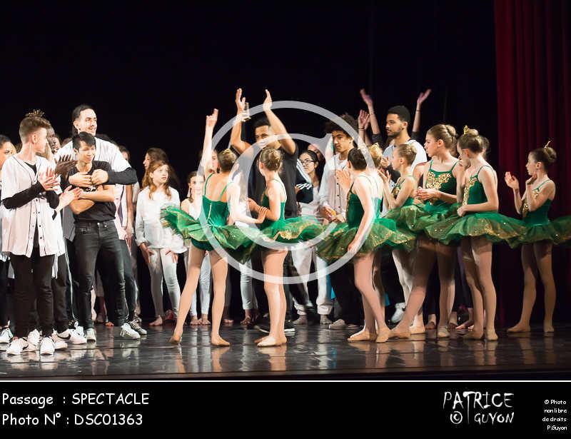SPECTACLE-DSC01363