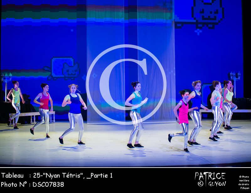 _Partie 1, 25--Nyan Tétris--DSC07838