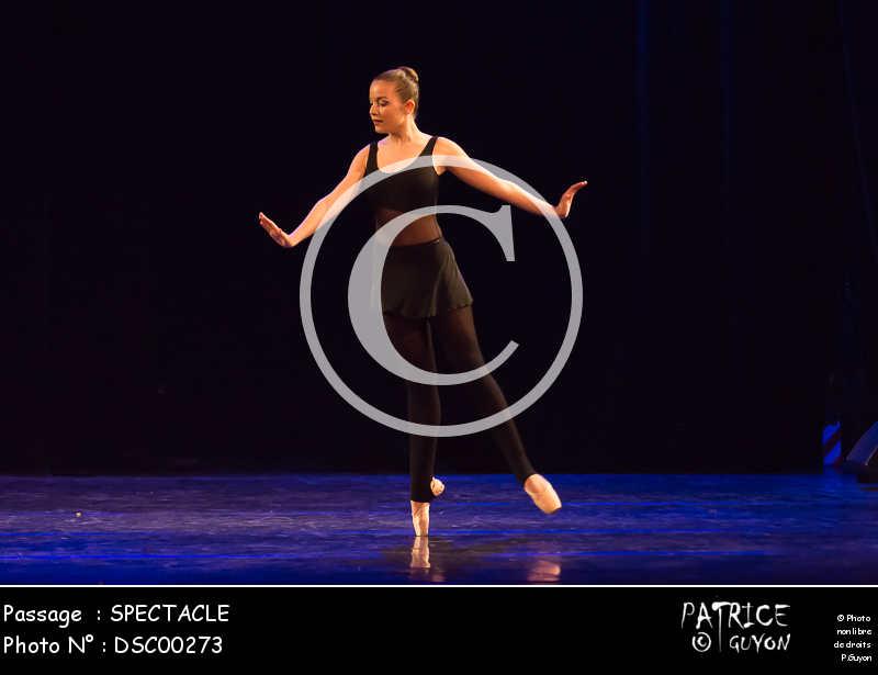 SPECTACLE-DSC00273