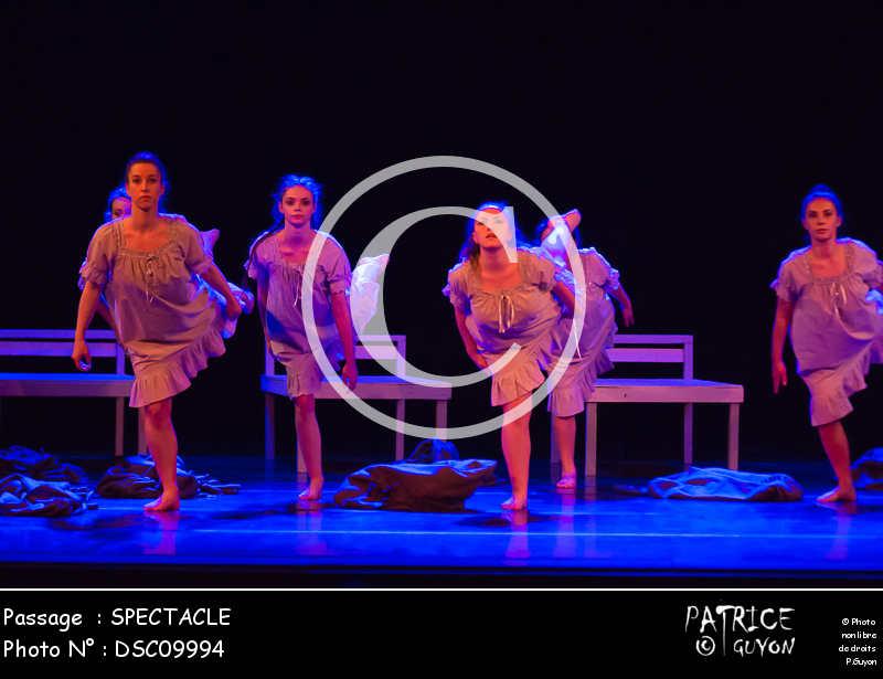 SPECTACLE-DSC09994
