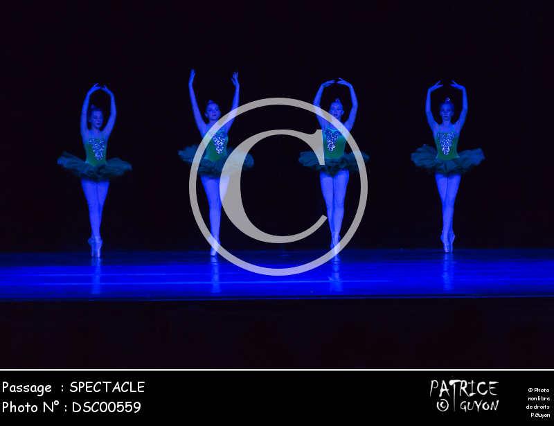 SPECTACLE-DSC00559