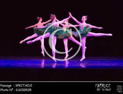 SPECTACLE-DSC00535
