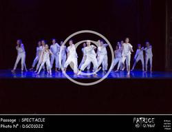 SPECTACLE-DSC01022