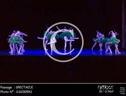 SPECTACLE-DSC00552