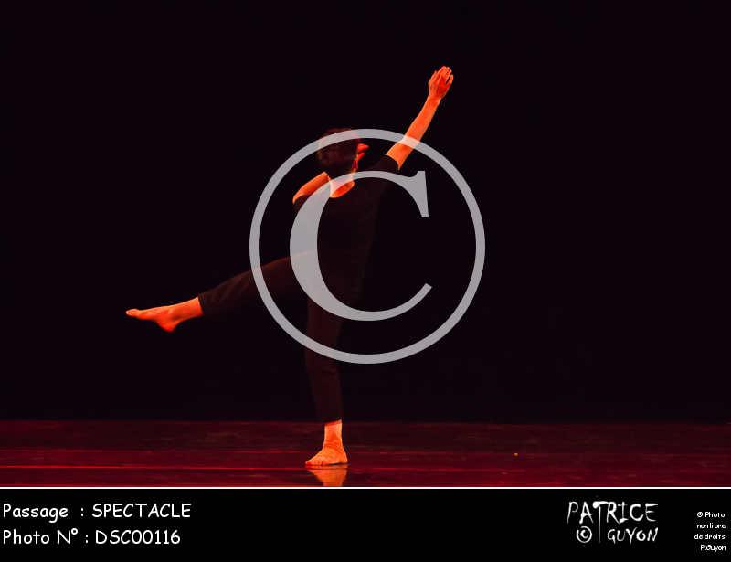 SPECTACLE-DSC00116