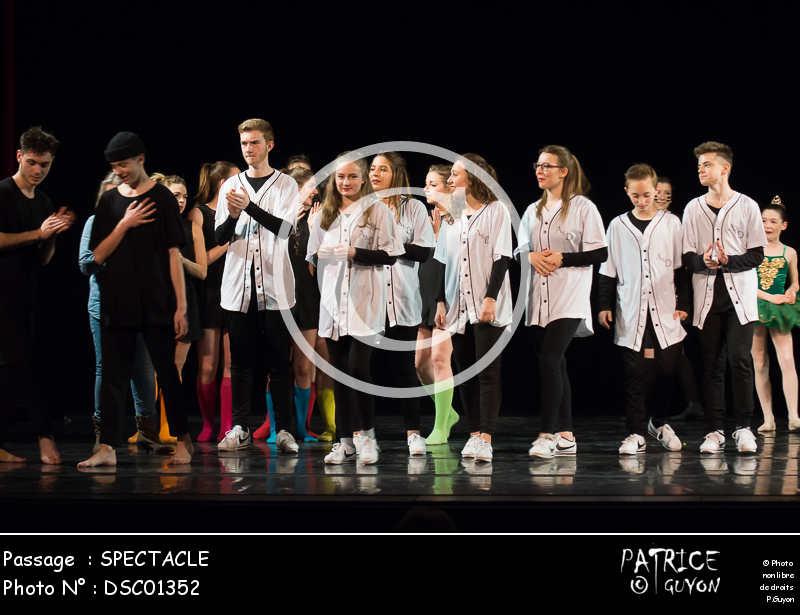 SPECTACLE-DSC01352