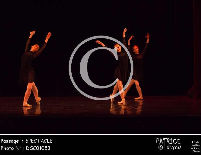 SPECTACLE-DSC01053