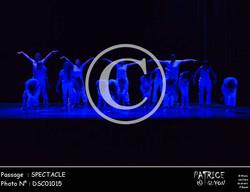 SPECTACLE-DSC01015