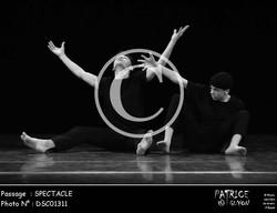 SPECTACLE-DSC01311
