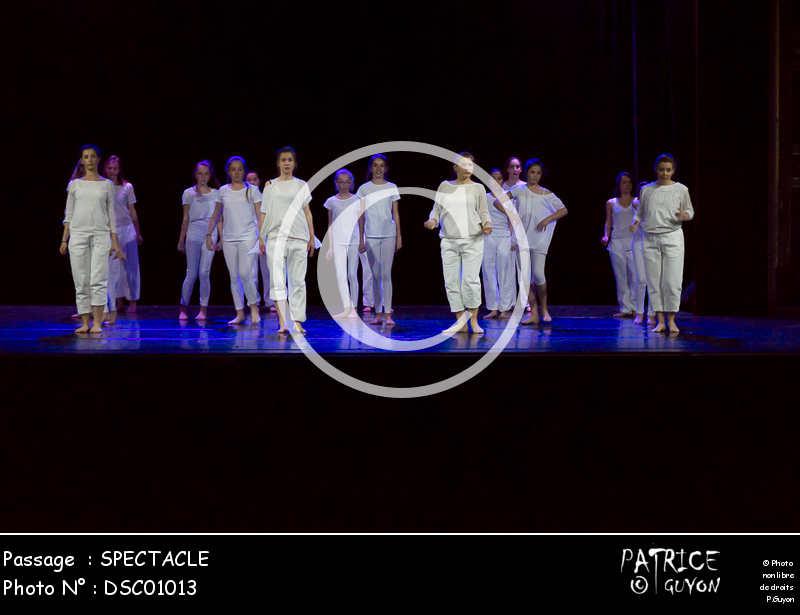 SPECTACLE-DSC01013