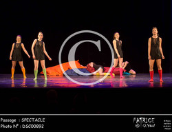 SPECTACLE-DSC00892