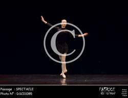 SPECTACLE-DSC01085