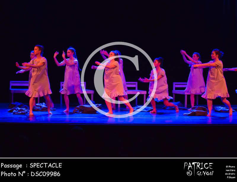SPECTACLE-DSC09986